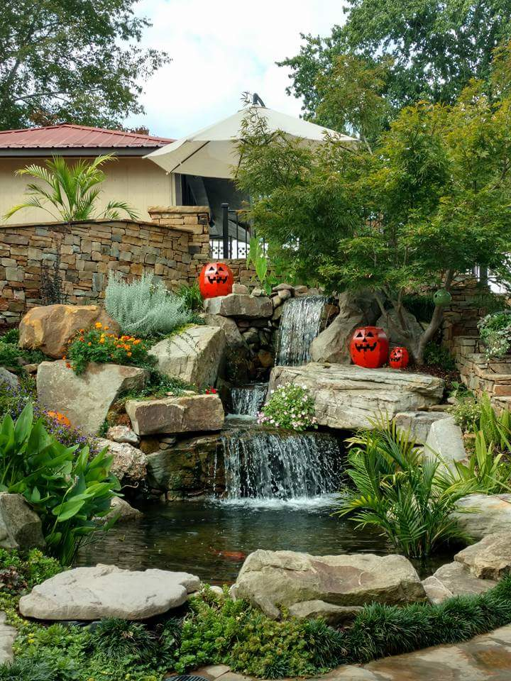 Rock ponds designs featured pond designs unique water for Rock ponds designs