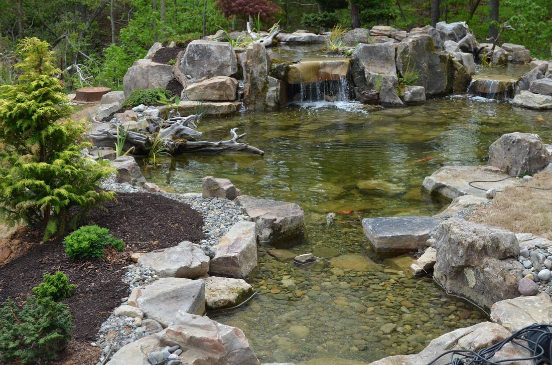 ecosystem pond contractor design u0026 maintenance nc youngsville