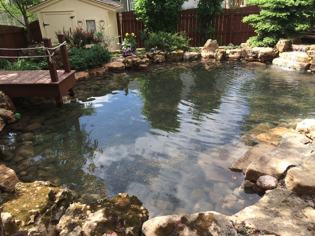 pond installation maintenance contractor naperville wheaton dupage