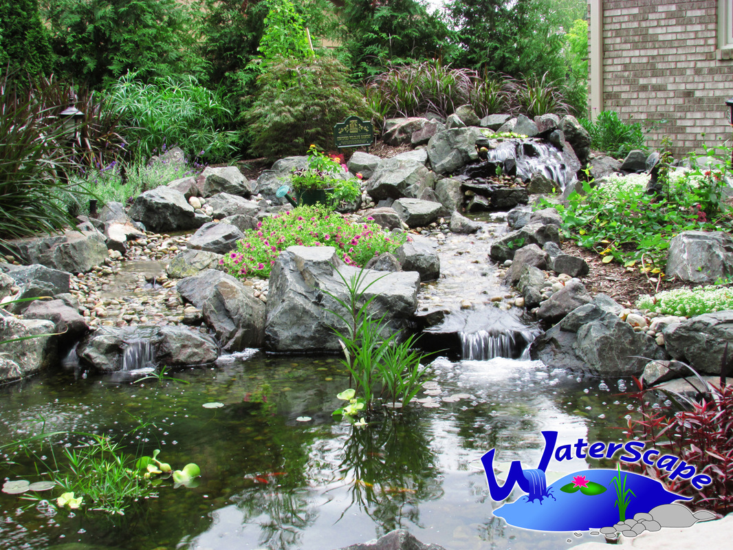 pond installation repair maintenance ann arbor washtenaw michigan