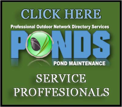 Pond Maintenance Services