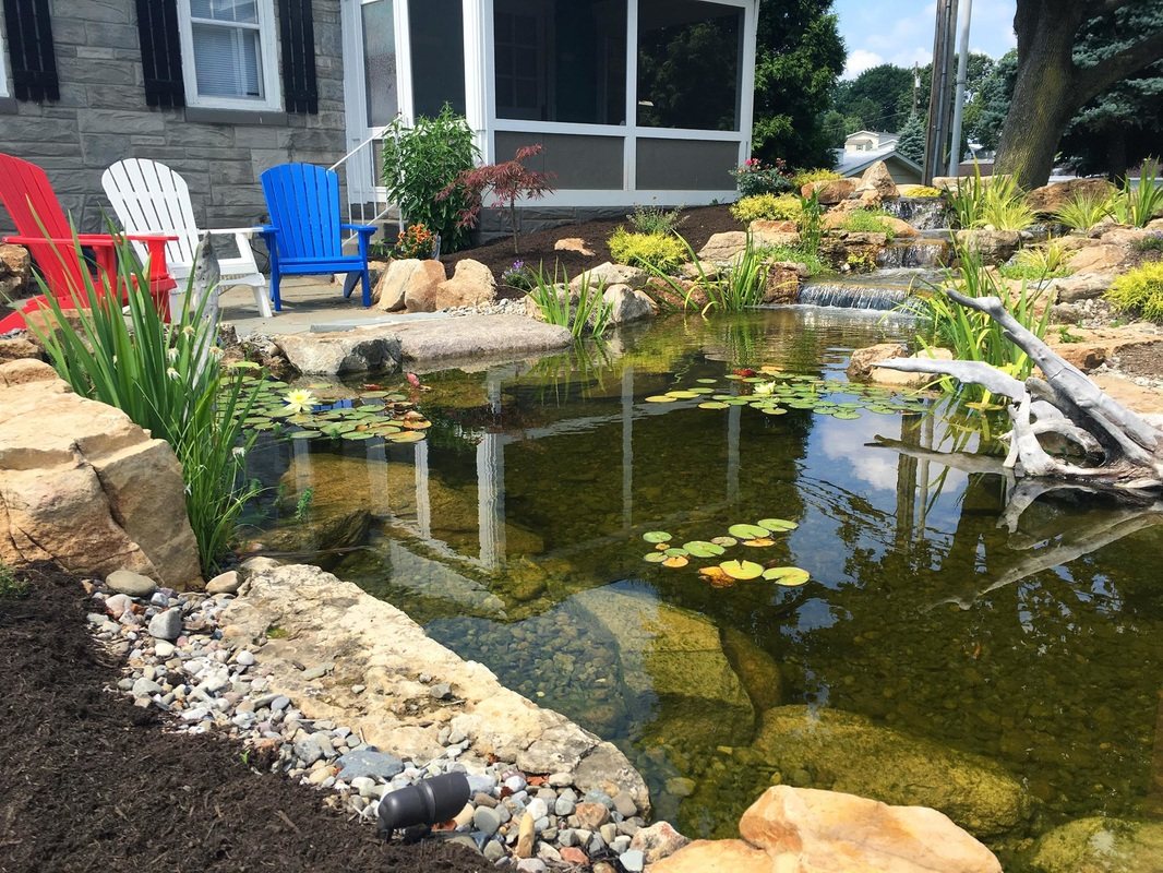 How do i build an backyard fish pond pond contractor for Creating a pond