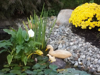 Ponds by Bee Landscaping Boonsboro, Washington Co, MD