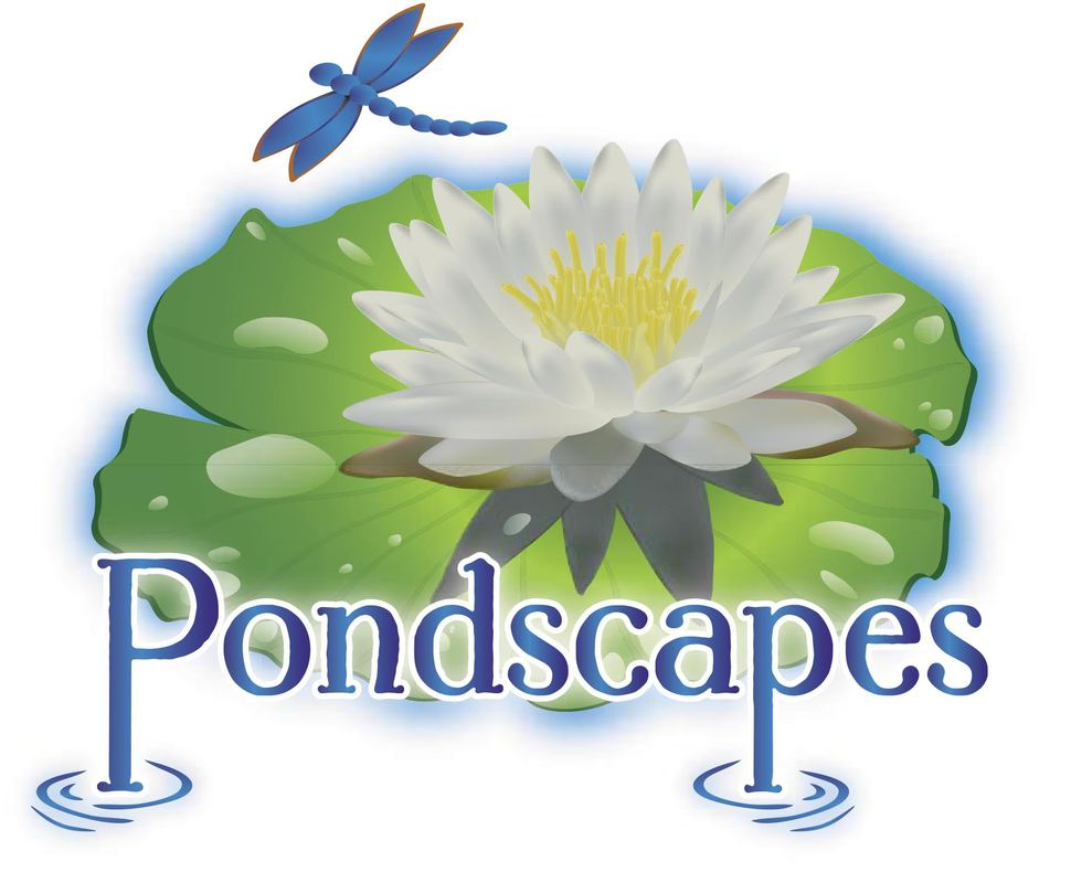 Pondscapes- Pond Contractor Scottsdale, AZ and Maricopa County, Arizona surrounding areas