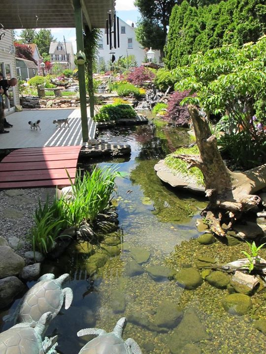 Bridges Come In All Shapes, Types, And Sizes. The Materials Used To Create  Your Garden Pond Or Landscape Bridge Will Also Determine The Maintenance  Needed ...